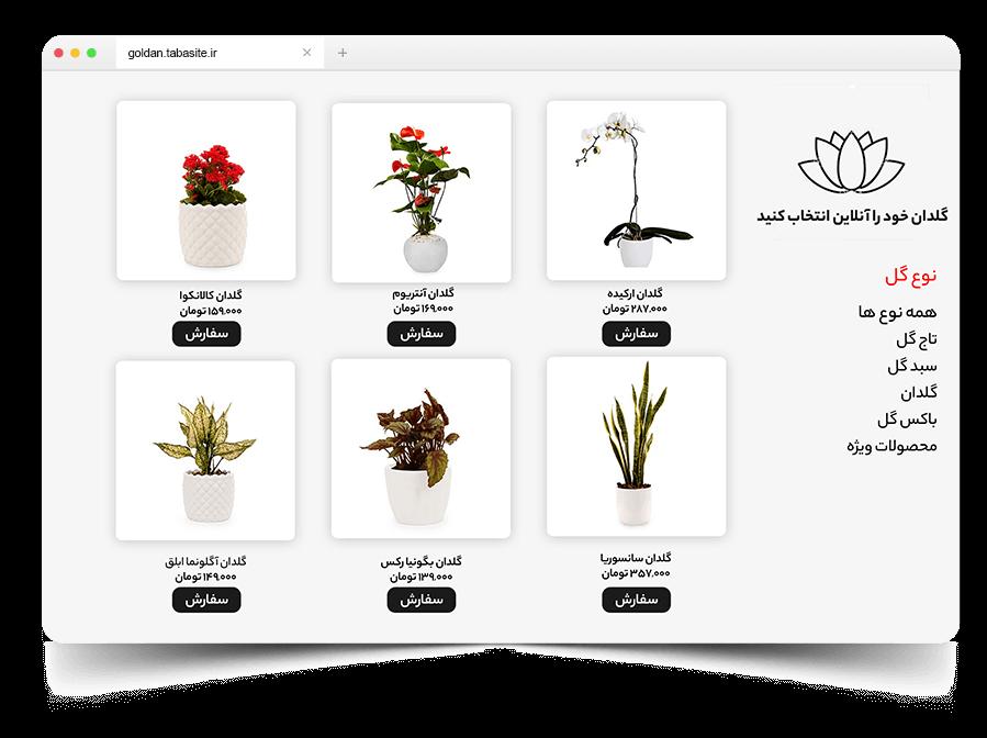 Website demo for header